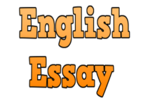 Essay On English Teacher  Abortion Essay Thesis also Research Essay Papers English Essay On An Ideal Teacher English Essay Paragraph  Best Business School Essays